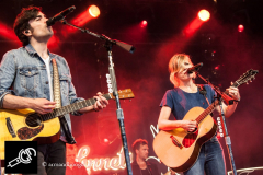 The_Common_Linnets_isf_2016-007