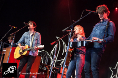 The_Common_Linnets_isf_2016-008