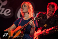 The_Common_Linnets_isf_2016-009