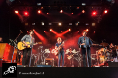 The_Common_Linnets_isf_2016-013