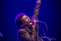 Charles-Bradley-and-His-Extraordinaires-at-DTRH2016-25_06_2016-06