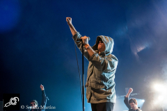 Ty-Segall-and-The-Muggers-at-DTRH2016-25_06_2016-02