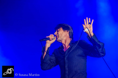 Suede-at-DTRH2016-26_06_2016-02