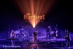 The-BlueBirds-Energiehuis-30-09-21-009
