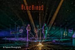 The-BlueBirds-Energiehuis-30-09-21-027