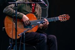 Jose-Gonzales-Zuiderparktheater-05082019-Denise-Amber_010