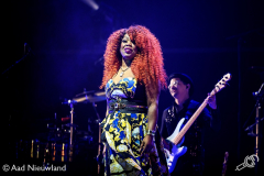 Ladies-of-Soul-Ziggo-Dome-15022019-Aad-Nieuwland_003