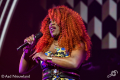 Ladies-of-Soul-Ziggo-Dome-15022019-Aad-Nieuwland_019
