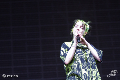 Billie-Eilish-LL19-rezien-10