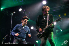 Eels-Once-in-a-Blue-Moon-24082019-Luuk-4