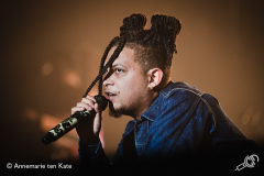 ronnie-flex-afas-live-2018-Annemarie-ten-Kate_-7