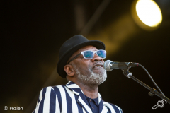 The-Specials-StadsparkLive2019-rezien-16