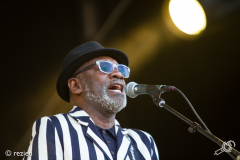 The-Specials-StadsparkLive2019-rezien-17